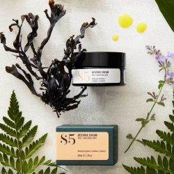 Restore Cream S5 Skincare