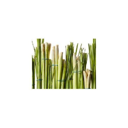 Aceite de Lemongrass